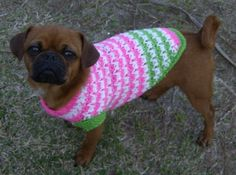 crochet hat patterns for large dogs | Filed under: Dog Coat , dog sweater