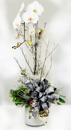 Orchid plants phalaenopsis orchid and orchids on pinterest Christmas orchid arrangements
