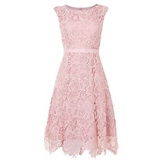 Phase Eight Rose Lace Fit and Flare Dress, Powder