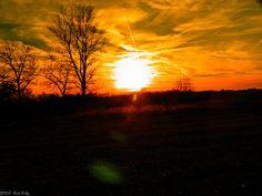 filtered sunset