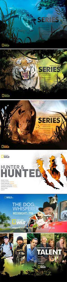 advertising set | Nat Geo Wild Magazine Adverting Series