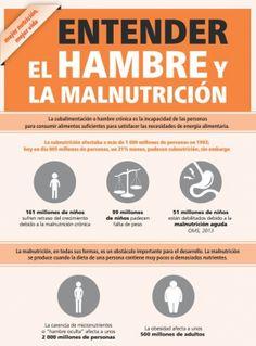 un infografia sobre hambre cero.