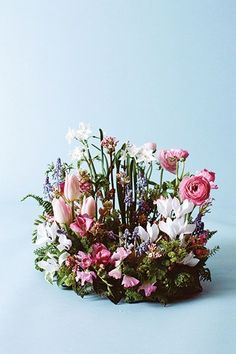 rites of spring » Flower Magazine Françoise Weeks captures the magic of new growth