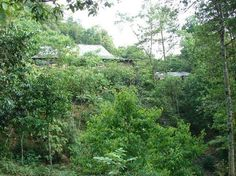 Chez XiQuan Homestay Ta Phin village