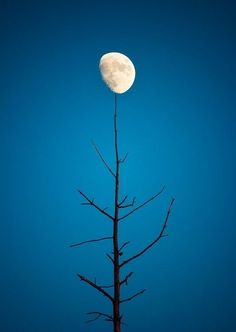 10. Balancing Act ! | Community Post: 21 Breathtaking Images Of Moon That Will Make You Think If It's Real Or Not