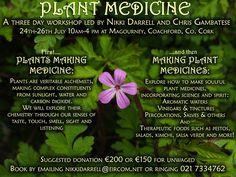 "3 day Workshop ""Plant Medicine"", July 2015 led by Nikki Darrel and Chris Gambatese, Coachford Medicinal Plants, Medicine, Workshop, Herbs, Events, Led, How To Make, Atelier, Work Shop Garage"