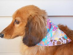 Small Medium Dog Bandana  Multicolor by Joanna1966 on Etsy,