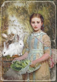 Lovely girl feeding rabbits card $5.00