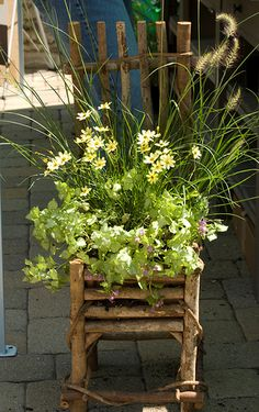 Natural Chair Container Garden - a design feature project for your garden. More creative container garden ideas @ http://themicrogardener.com/category/container-ideas/ | The Micro Gardener