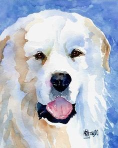Great Pyrenees Art Print of Original Watercolor by dogartstudio