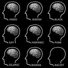 Brains -