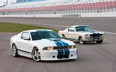 11 Shelby Cobra GT 350 & 65 Shelby Cobra GT 350