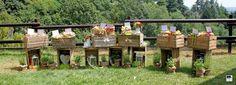 Tableau wedding fruit theme created by Mariagrazia Tarantino for Graceevent.net Matrimonio a tema frutta. Ideato progettato da Mariagrazia Tarantino pet graceevent Www.graceevent.net Copyright reserved