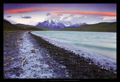 Laguna Amarga, Torres Del Paine national park, Patagonia, Chile