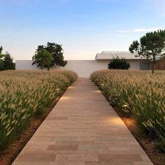 Entrance to Salvia restaurant through a sea of waving grass. Ca Na Xica hotel and spa Ibiza. Balcony Design, Garden Design, House Design, Design Hotel, Ibiza Restaurant, Home Landscaping, Hotel Spa, Tenerife, Gardens