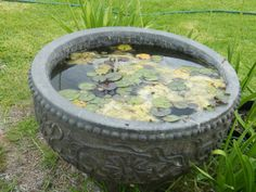 Unfortunately I have expensive taste :( A Bird Bath / water feature for the garden.