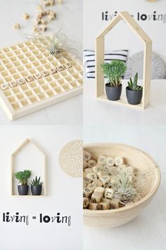 meaningful noise: succulents in wooden frame