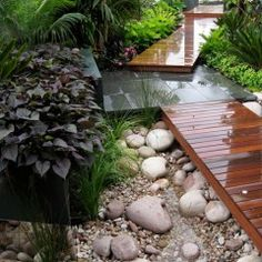 A subtropical urban oasis, this shady fragrant garden sanctuary has great indoor-outdoor integration