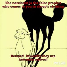 The Narcissist is the false prophet.
