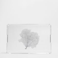 METHACRYLATE TRAY WITH A TREES PATTERN - Trays - Tableware - HOME COLLECTION AW16 | Zara Home Sverige / Sweden
