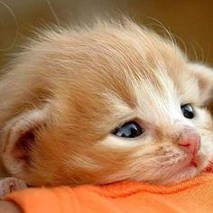 Precious baby!❤️❤️