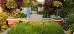 Traditional Home garden - Seattle