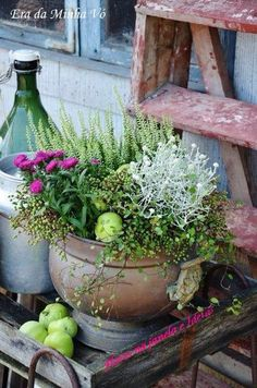 Organic Gardening Pest Control to Protect Your Plants Container Design, Autumn Garden, Fall Flowers, Garden Pots, Garden Inspiration, Organic Gardening, Container Gardening, Indoor Plants, Garden Landscaping
