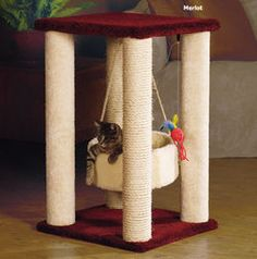 cat poles - Google Search