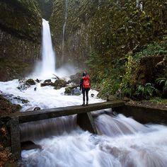 Dry Creek Falls, Cascade Locks, Oregon