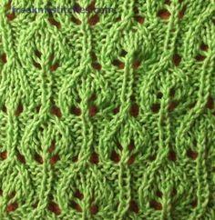 Bush knitting stitches