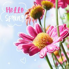WELCOME, SPRING! It's like nature's way of throwing a party! #springtime #weloveyou #southflorida