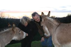 We share our lives with many animals.  Together for Donkeys' Ears.
