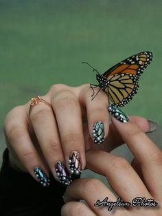 Hey, I found this really awesome Etsy listing at http://www.etsy.com/listing/159015351/hand-painted-iridescent-butterfly
