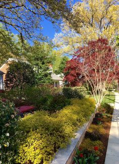 "beautiful-gardens-com: "" Spring in Washington DC. A beautiful garden here, designed and installed by Tom Mannion Landscape Design, Inc """