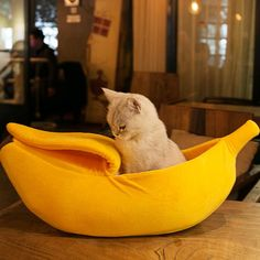 Small Pet Bed Banana Shape Fluffy Warm Soft Plush Breathable Bed Banana Cat Bed House For Pet Bed Portable Indoor In Winter cat furniture Pet Beds, Dog Bed, Pet Kennels, Hamster, Cat Dog, Cat Accessories, Cat Sleeping, Cute Cars, Large Dogs