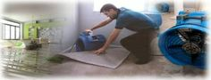 As a cleaning services contractor and facility management provider, we at Capital Facility Services use quality system for flood, water and fire damage cleaning and restoration requirements - http://www.capitalfacilityservices.com.au