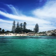 Beachy perfection at The Basin Rottnest Island  #rottnest #rottnestisland #ocean #beach #thebasin #blueskies #boatride #clearwater #turquoisewater #beautiful #beachlife #holidays #australianchristmas #westernaustralia #australia #heaven @rottnestislandwa by nicola1688 http://ift.tt/1L5GqLp