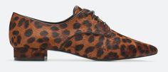 Just Bela day: Blucher Leopard Wish List :)
