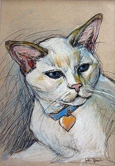 Pet Portrait Sketches by Julie Pfirsch White Flame Point Siamese Cat - Pencil, colored pencil and ink on tan toned paper www.juliepfirsch.com