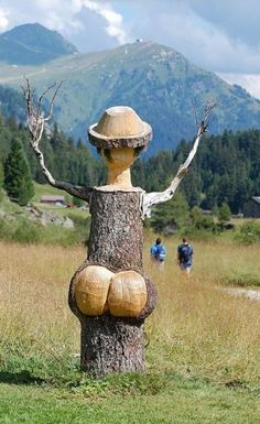 Funny Wood Sculpture in the middle of a road! Tree Sculpture, Garden Sculpture, Tree Carving, Unique Trees, Recycled Art, Yard Art, Funny Photos, Funny Images, Bing Images