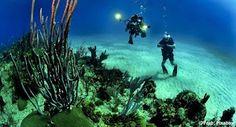 Pregopontocom Tudo: China desenvolve aparelho submersível capaz de alcançar qualquer fundo marítimo...