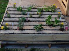 Πώς να κάνετε από μια παλέτα ένα υπέροχο κήπο | SunnyDay