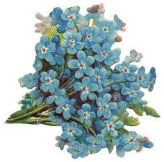 bouquet of forget-me-nots