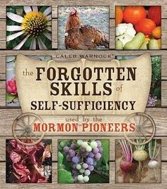 Forgotten Skills of Self-Sufficiency Used By The Mormon Pioneers – cool book! Love his blog too.