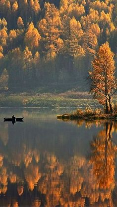 Fall colors in Lake Satka, Russia   Photograph by Mikhail Trakhtenberg