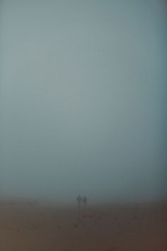 northern CA, san francisco fog, san francisco enagement session
