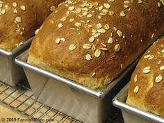 Hello! If you're a new bread baker—or if you're an experienced bread baker who wishes they could create tastier loaves—you might enjoy my Te...