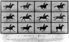 """The animation is based on Eadweard Muybridge's photography series """"The Horse In Motion."""" According to Hawkins, """"it was the birth of motion film and this project is also the first of its kind."""" 