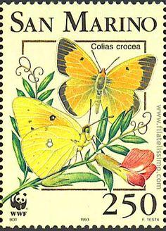 sellos postales de mariposas - Buscar con Google