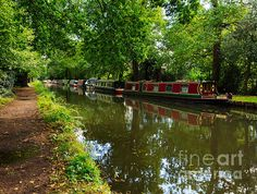 Narrowboats Moored On The Wey Navigation In Surrey ©Louise Heusinkveld